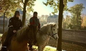 Utrechtse Heuvelrug : Met je paard bij ons te gast